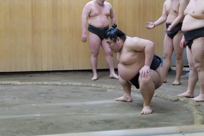 sumo5.png