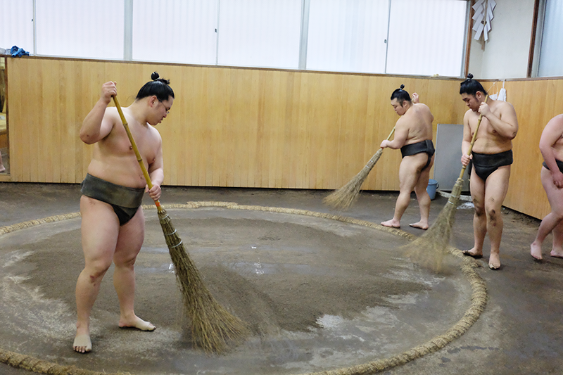 sumo2.png