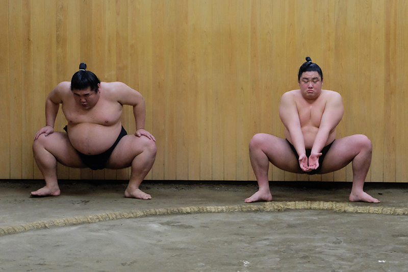 sumo9.png